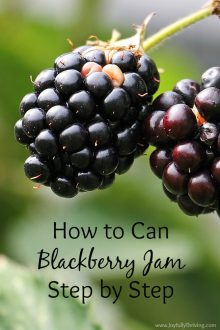 I didn't know it was this simple! Canning jam is so good, too. Here's how to can blackberry jam, step by step.