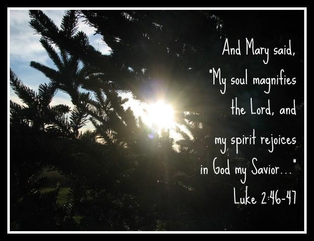 Luke 2:46-47