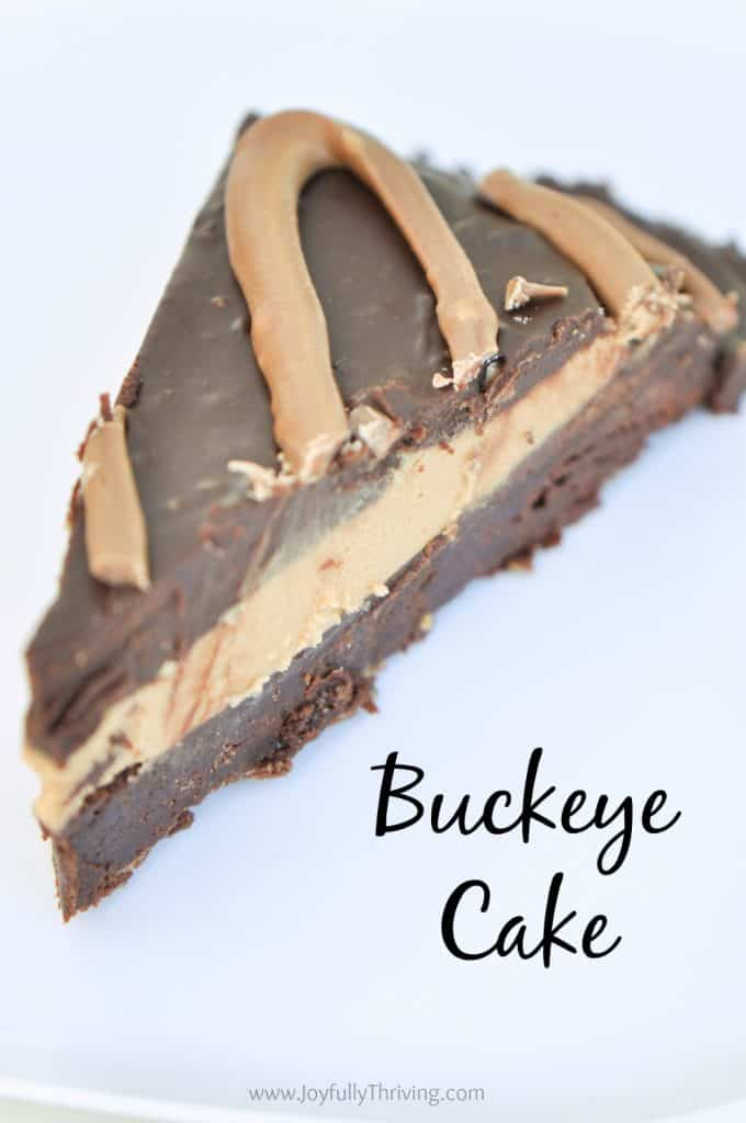 Buckeye Cake - SOOOO good! What an amazing chocolate and peanut butter dessert. A new favorite!