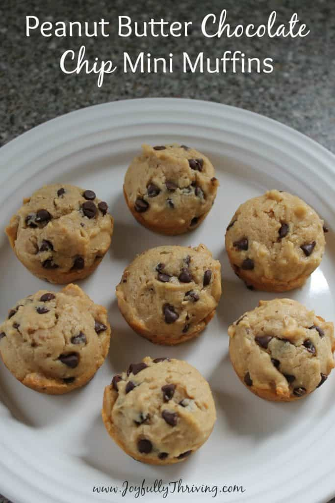 Peanut Butter Chocolate Chip Mini Muffins - A quick, delicious and filling breakfast treat. And these muffins freeze great!