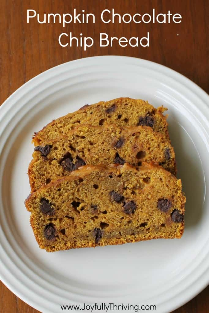 Pumpkin Chocolate Chip Bread - If you're looking for a simple and delicious fall quick bread recipe, try this one. It's the perfect combination of pumpkin flavors!