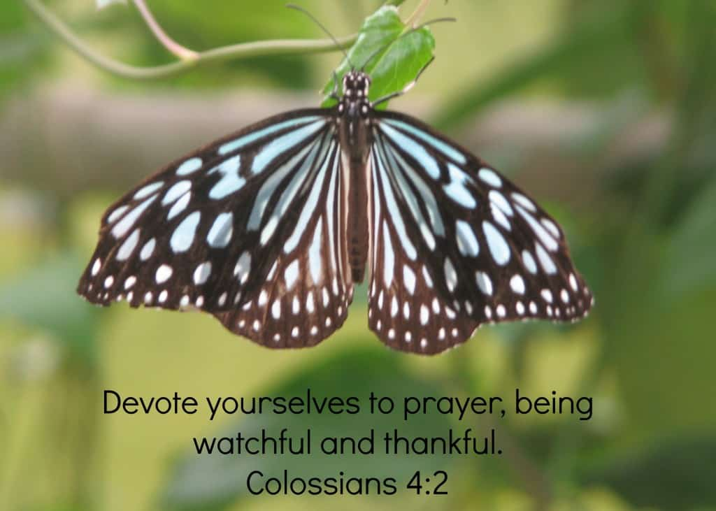 Colossians 4:2