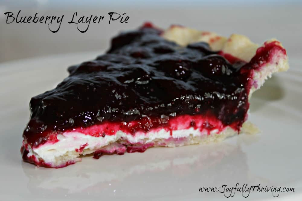 Blueberry Layer Pie Slice - Joyfully Thriving