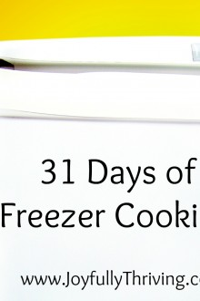 Wrapping Up a Month of Freezer Cooking