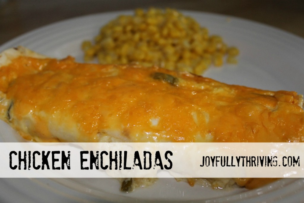 Chicken Enchiladas - Joyfully Thriving