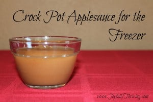 Crock Pot Applesauce - Joyfully Thriving
