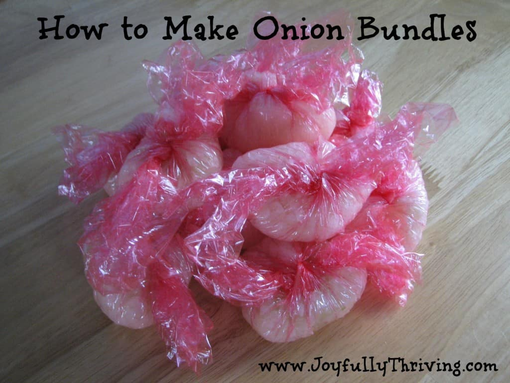 How to Make Diced Onion Bundles for the Freezer - Joyfully Thriving