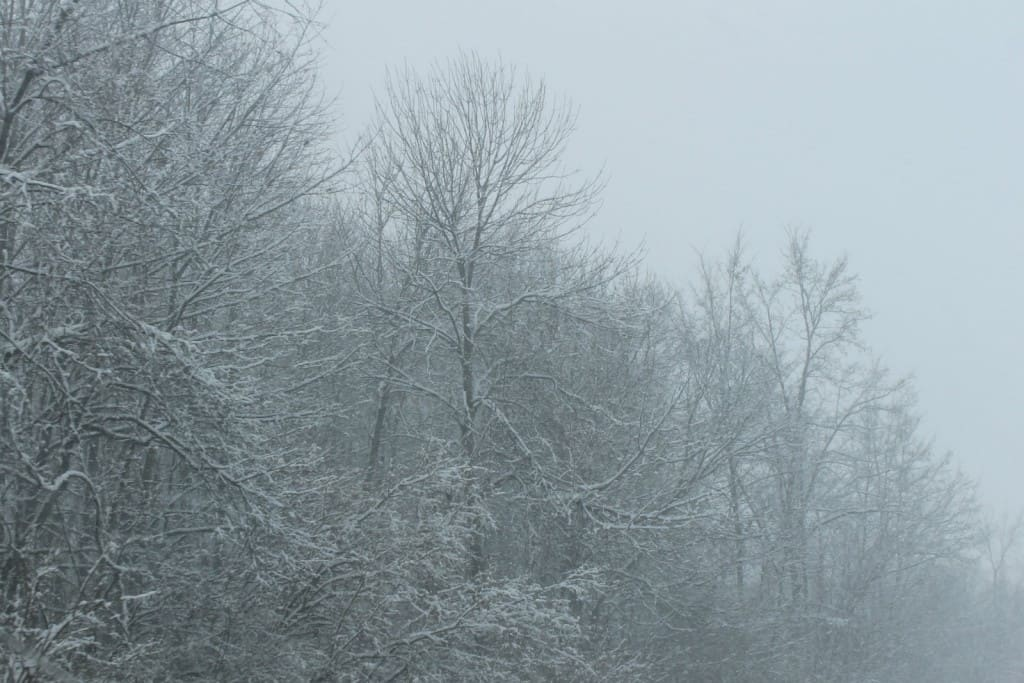A Snowy Scene in Indiana
