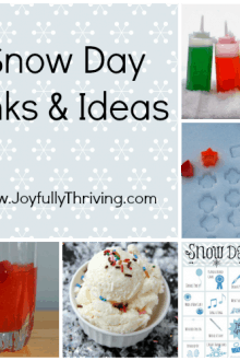 Ideas and Links for a Snow Day - Here's some great ideas for you and your children on the next snow day!