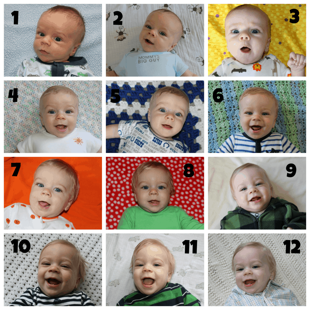 Nathan's 12 Month Collage