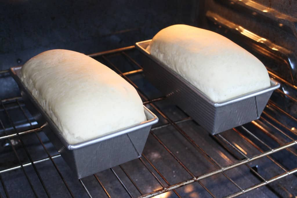 When your loaves have doubled, it's time to bake your bread! Read more bread tips and an easy homemade bread recipe here.
