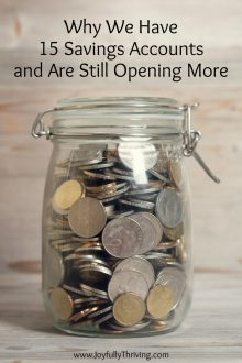 Why We Have 15 Savings Accounts and are Still Opening More