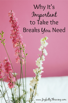 Why It's Important to Take the Breaks You Need - I'm so good at keeping busy that I need this reminder to take a break just for me.