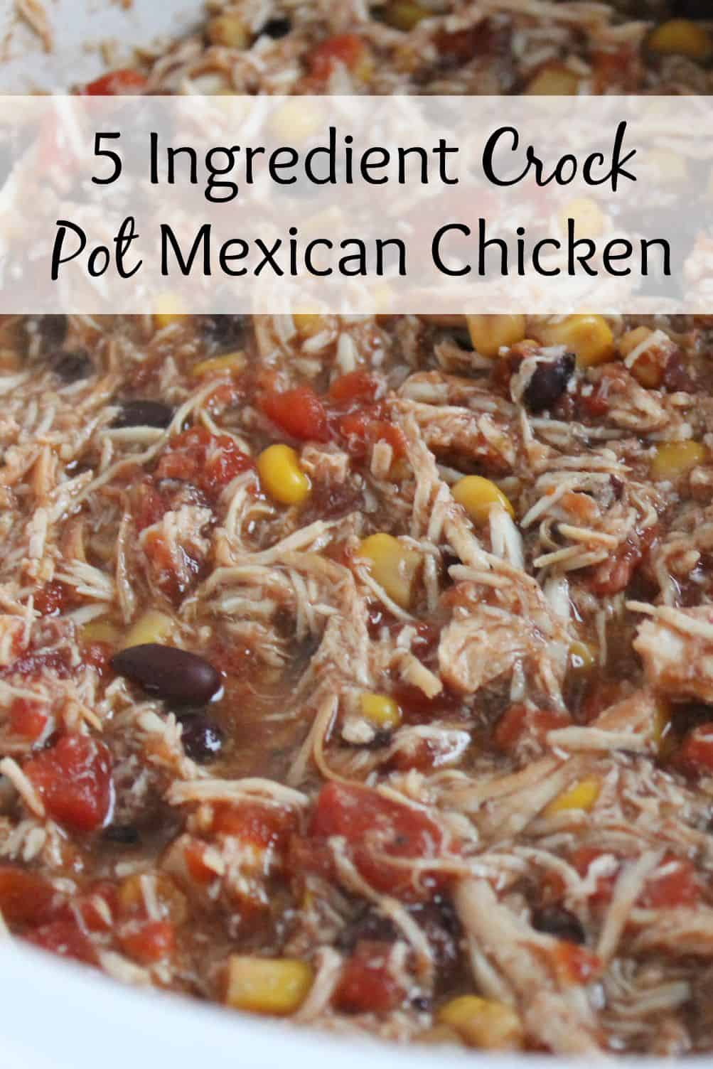 chicken crock pot 5 ingredient crock pot mexican chicken 30486