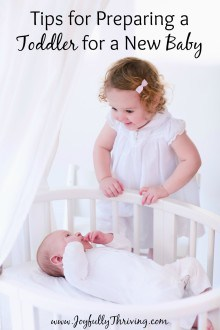 Preparing Toddler for Baby - If you're looking for tips on helping your toddler adjust to a new baby, check out this list for ideas and more links!