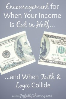 When Your Income is Cut in Half - Encouragement & hope for those of you struggling with this! Written by a Christian SAHM who's right there with you.
