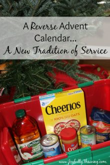 Reverse Advent Calendar Idea - Want a new tradition of service this year? I love this idea!