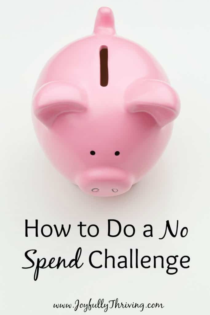 Trying to figure out how exactly to do a no spend challenge? Here are some simple tips that prove it really isn't that hard to save big!